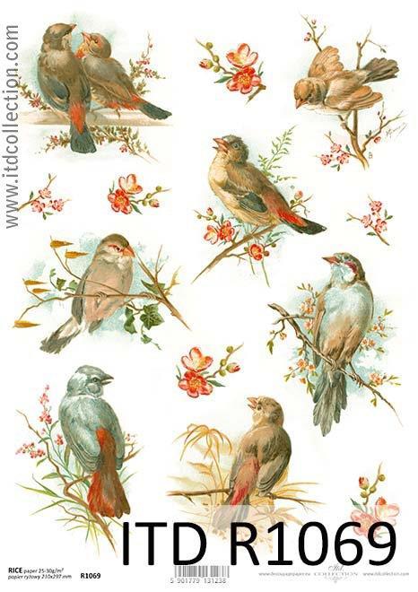 Papier Ryżowy Wiosenne Ptaki A4 Itd R1069